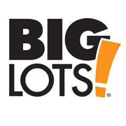 big lots logo 250x 250